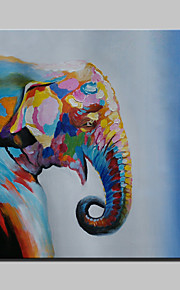 Handmade Modern Cartoon Elephant Animal Oil Painting On Canvas For Living Room Home Decor Wall Paintings Whit Frame