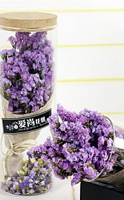 Brudebuketter Friform Lavendel Dekorationer Fest & Aften Tørrede Blomster 3.94 tommer (ca. 10cm)