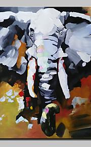 Hånd-malede Abstrakt / Dyr Oliemalerier,Moderne Et Panel Canvas Hang-Painted Oliemaleri For Hjem Dekoration
