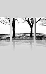 JAMMORY Canvas Set Landscape ,Three Panels Gallery Wrapped, Ready To Hang Vertical Print No Frame Black Tree