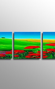 Garden Scenery Hand Painted Oil Painting 3 Piece/Set with Stretched Framed Ready to Hang