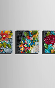 E-HOME Stretched Canvas Art Flowers Of All Colors Decoration Painting  Set of 3