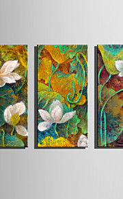 E-HOME Stretched Canvas Art Spectacular Lotus Decoration Painting One Pcs