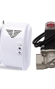 Allarme autonomo del rivelatore di perdite di gas naturale di lpg con dn20 elettrovalvola elettromagnetica per perdite di gas auto