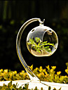 Table Centerpieces Hanging Ball Clear Glass Vase Centerpiece  Table Deocrations