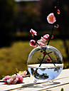 Table Centerpieces Round Clear Glass Vase Centerpiece  Table Deocrations