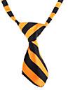 Chat / Chien Cravate/Noeud Papillon Orange / Blanc Vetements pour Chien Printemps/Automne Mariage