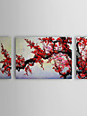 Oil Painting Floral Plum Flowers Set of 3 with Stretched Frame 1307-FL0154 Hand-Painted Canvas