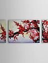 pittura a olio prugna floreale set di 3 con telaio allungato 1307-fl0154 tela dipinto a mano