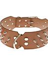 Hundar Halsband Dubbade / Nit Röd / Svart / Brun / Gul PU Läder