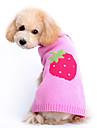 Hundar Tröjor Rosa Hundkläder Vinter Vår/Höst Frukt Gulligt