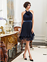 TS Couture® Cocktail Party / Holiday Dress - Dark Navy Plus Sizes / Petite Sheath/Column High Neck Knee-length Chiffon / Stretch Satin