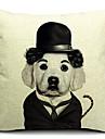 mr dog algodao / linho fronha decorativo