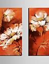 sträckta kanfaskonsttryck dröm blommor set om 2