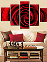 Trasferimenti su tela Art Floral Red Rose set di 5