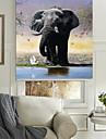 realistiskt levande elefant rullgardin