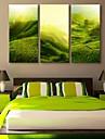 e-FOYER toile tendue es la colline paysages peinture decoration ensemble de trois
