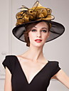 Beautiful Organza Special Occasion Hats With Big Side(more colors)