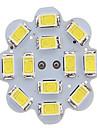 G4 LED-lampor med G-sockel 12LED SMD 5730 300-450 lm Varmvit / Kallvit AC 12 V 1 st