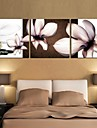 Prints Poster Orchid Flower Home Decorative  Pictures Print On Canvas  3pcs/set (Without Frame)