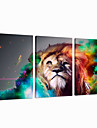 visuelle paroi star®lion art de la decoration triptyque toile animale impression pret a accrocher