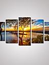 Fritid / Landskap / Botanisk / Fotografisk / Romantik / Resor Canvastryck Fem paneler Redo att hänga , Horisontell