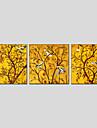 oljemålningar modern blomma och fågel stil duk material med trä bår redo att hänga storlek 70 * 70 * 3st
