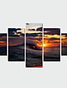 Paysage Toile Cinq Panneaux Pret a accrocher , Format Horizontal