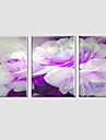 Botanisk / Modern / Popkonst Canvastryck Tre paneler Redo att hänga , Horisontell