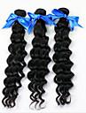 Tissages de cheveux humains Cheveux Bresiliens Ondulation profonde 18 Mois 3 Pieces tissages de cheveux