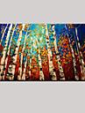 Peint a la main Paysage / Nature morte / Fantaisie Peintures a l\'huile,Pastoral / Style europeen Un Panneau ToilePeinture a l\'huile