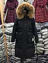 Dame Simplu(ă) Lung Geacă Palton,Mată Casul/Zilnic / Plus Size Manșon Lung Poliester Rață Albă Jos Negru