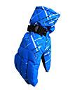 Gants de ski Doigt complet Femme / Homme Gants sport Resistant a la neige Gants Snowboard Polyester Hiver