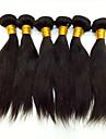 Human Hår vävar Peruanskt hår Ret 18 månader hår väver