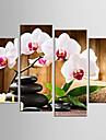 toile set Nature morte A fleurs/Botanique Moderne Realisme,Quatre Panneaux Toile Toute Forme Imprimer Art Decoration murale For