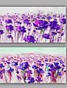 Pictat manual Floral/Botanic Orizontal,Modern Clasic Două Panouri Canava Hang-pictate pictură în ulei For Pagina de decorare