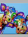 Pictat manual Animal Pătrat,Modern Un Panou Canava Hang-pictate pictură în ulei For Pagina de decorare
