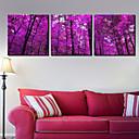 Protezala Canvas Art Pejzaž tamno ljubičasta Drveće skup od 3