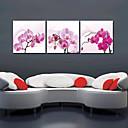 Protezala Canvas Art Cvjetni Orhideja Set od 3