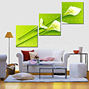 3個セットキャンバスアート植物フライングTuplips