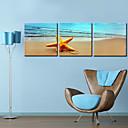 Protezala Canvas print umjetnosti Pejzaž pješćane plaže Set od 3