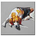 Ručno oslikane ulje na platnu životinja štene u Nap 01