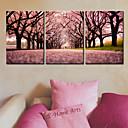 Modern Style Cherry Blossom sat u platnu 3pcs