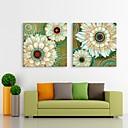 E-home® rastegnut na čelu platnu print umjetnosti cvijeće Flash učinak vodila set 2