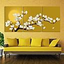 e-HOME® plátně umělecké magnólie dekorace malování set of 3
