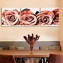 e-HOME® plátně umění růže dekorace malování set of 3