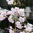 emulationalの4分岐桜