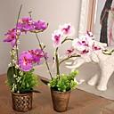 """9.8 """"L 11.8"""" h vintage phalaenopsis u bronci plastičnoj posudi ratana"""