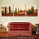 E-home® pruži platnu si kuću cvijeća dekorativno slikarstvo set od 3