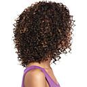新しいスタイリッシュな自然の健康な髪の深いカーリーミックスカラー合成かつら